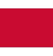 CorianQuartz_logo